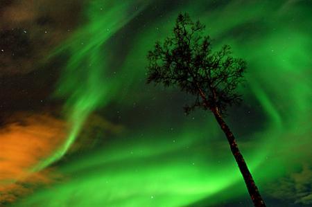 fotos_artico_aurora_boreal.jpg