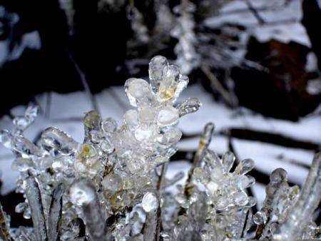 cristales_de_hielo_en_el_teide_.jpg